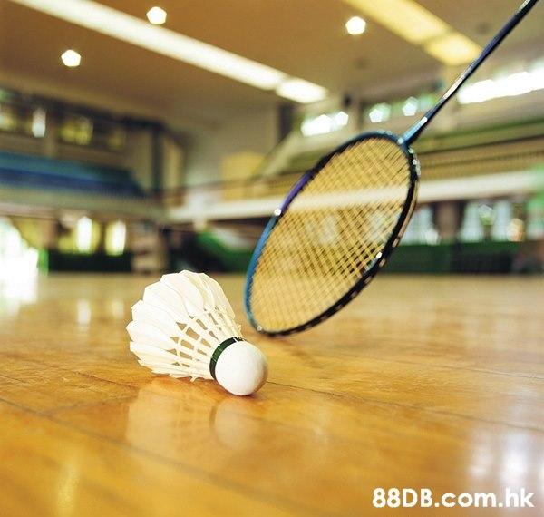 .hk  Tennis racket,Racquet sport,Shuttlecock,Badminton,Racket