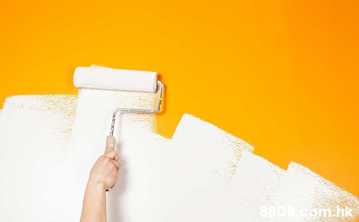 om.nk  Yellow,Wall,Paint roller,Orange,Plaster