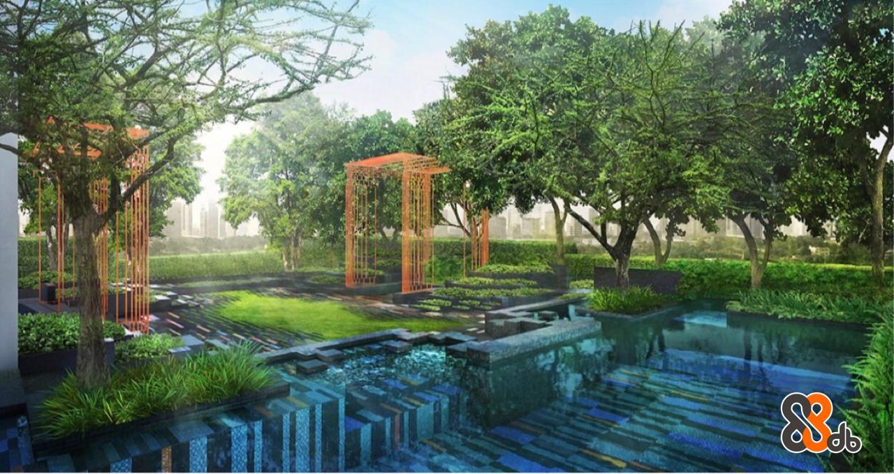 Natural landscape,Nature,Tree,Property,Natural environment