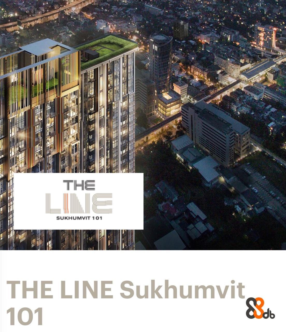 THE LINE SUKHUMVIT 101 THE LINE Sukhumvit, 101  Property,City,Architecture,Condominium,Urban area