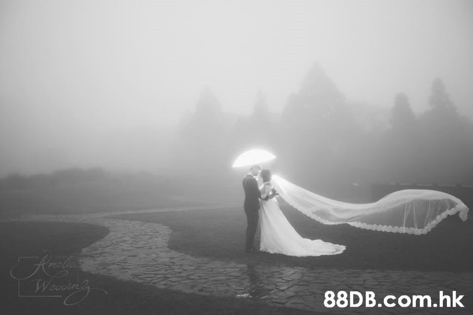 Wedin'g .hk  White,Photograph,Atmospheric phenomenon,Mist,Sky