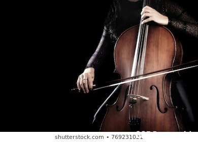 shutterstock.com 769231021  String instrument,Musical instrument,String instrument,Violin family,Cellist