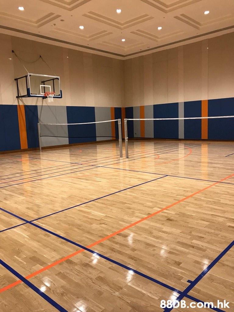 .hk  Sport venue,Floor,Flooring,Room,Basketball court