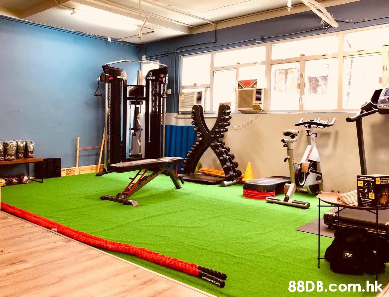 tis TRX .hk  Gym,Room,Flooring,Grass,Physical fitness