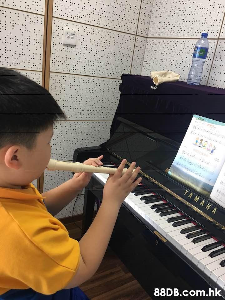 ua gi YAMA HA .hk  Piano,Musical instrument,Electronic instrument,Keyboard,Musical keyboard