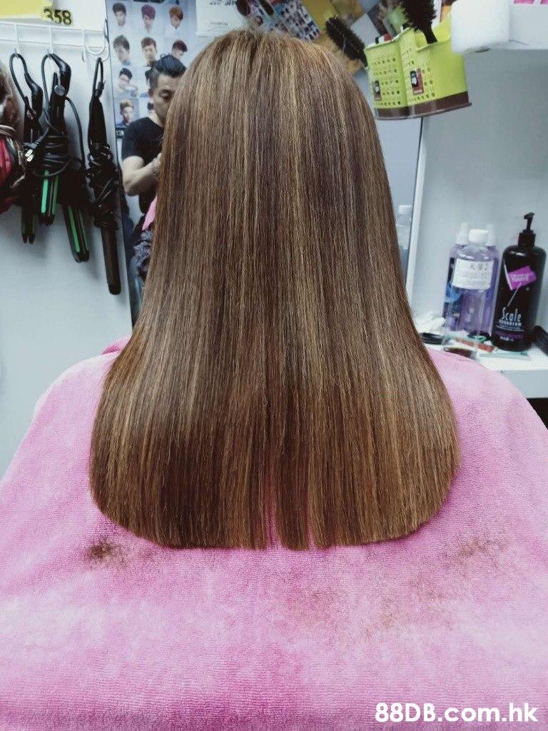 358 .cale .hk  Hair,Hairstyle,Hair coloring,Long hair,Beauty salon