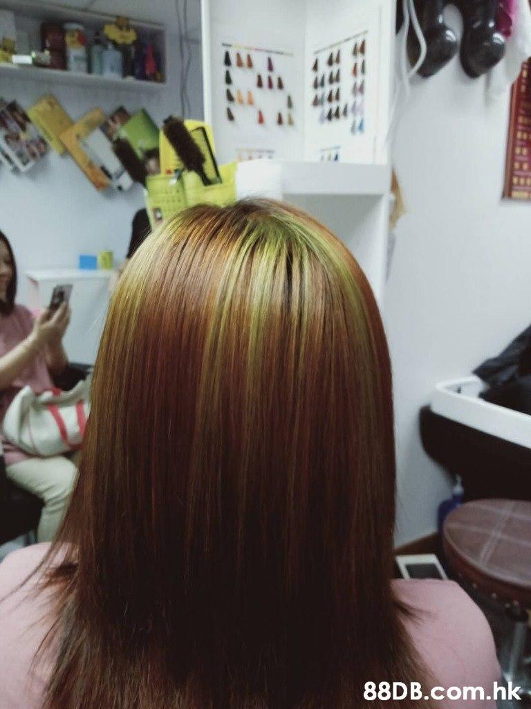 & 1 1 T1 .hk  Hair,Hair coloring,Hairstyle,Beauty salon,Long hair