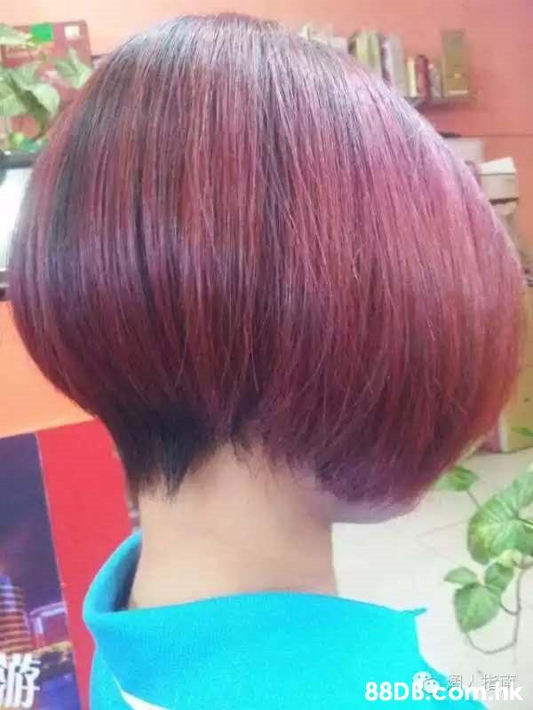 88D晚 南 ik  Hair,Hairstyle,Bob cut,Hair coloring,Purple