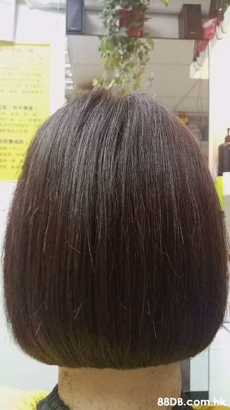 .hk  Hair,Hairstyle,Forehead,Bob cut,Brown