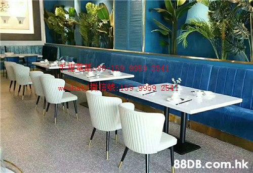 圖信號 9g 2541 .hk  Restaurant,Property,Table,Room,Furniture