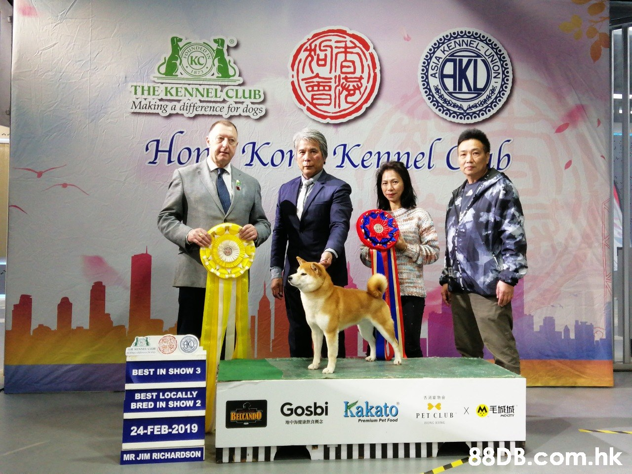 Ou NDED KENN (KC I873 THE KENNEL CLUB Making a difference for dogs Hor Ko Kepnel b BEST IN SHOW 3 BEST LOCALLY BRED IN SHOW 2 Gosbi Kakato 香港審物會 BELCANDO M毛城城 X PET CLUB 地中海健康飲食概念 24-FEB-2019 MR JIM RICHARDSON .hk ASIAA NOIN  Dog,Canidae,Junior showmanship,Conformation show,Kennel club