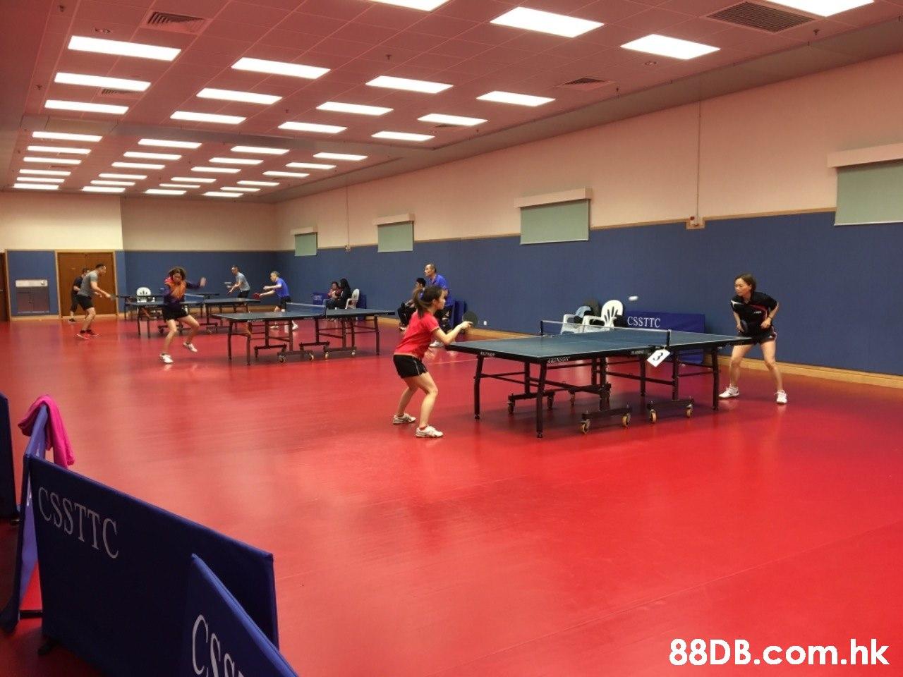 CSSTTC CSSTTC .hk  Sports,Ping pong,Racquet sport,Ball game,Table tennis racket