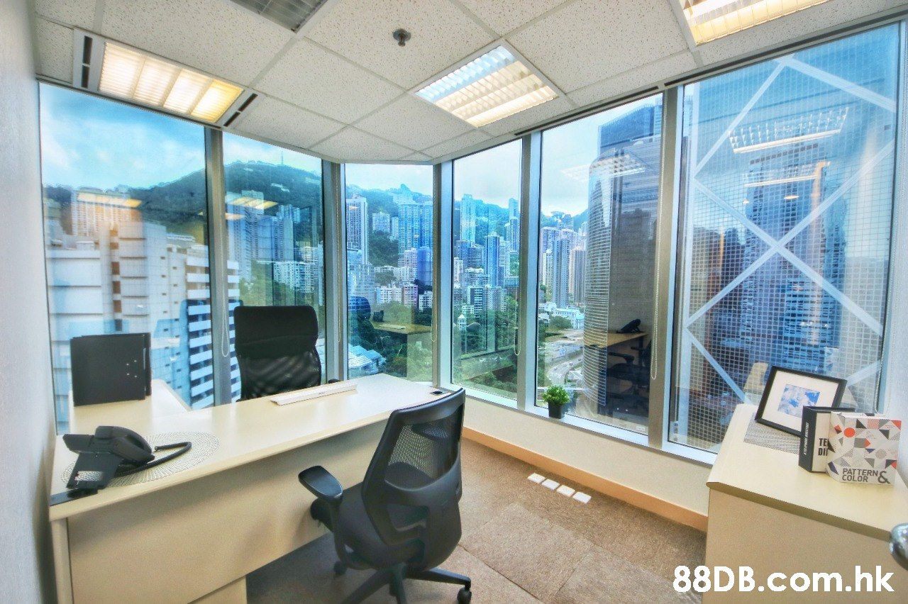 TE DII PALDERNS .hk  Property,Office,Building,Office chair,Real estate