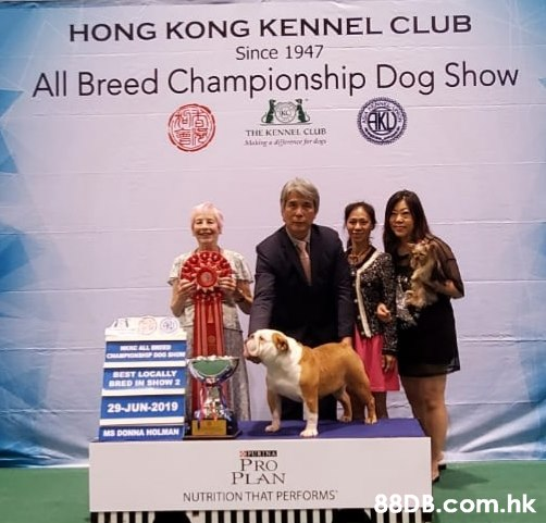 HONG KONG KENNEL CLUB Since 1947 All Breed Championship Dog Show AKD THE KENNEL CLUB Alaking r erd BEST LOCALLY BRED IN SHOW a 29-JUN-2019 MS DONNA HOLMAN PRO PLAN NUTRITION THAT PERFORMS .hk  Dog,Canidae,Dog breed,Junior showmanship,Conformation show