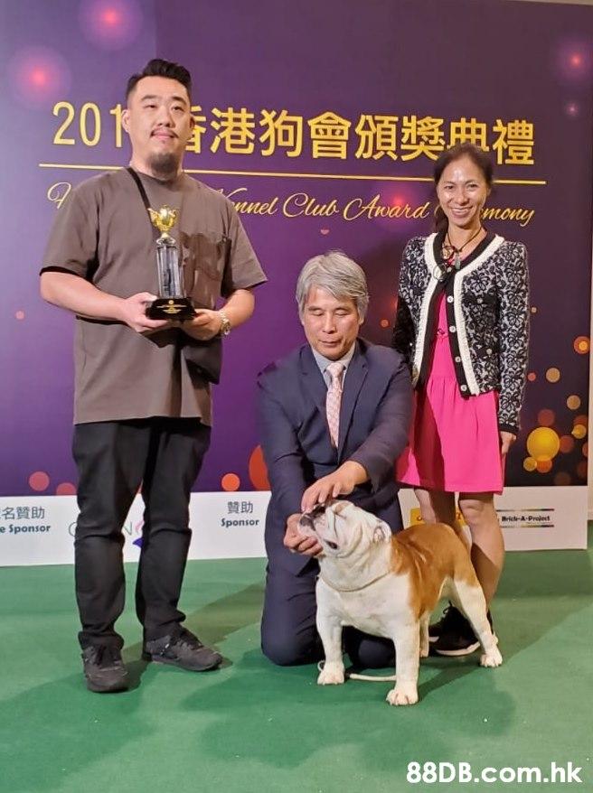 201港狗會頒獎典禮 nel Club CAward (mony 贊助 名贊助 e Sponsor Hrich A-Project Sponsor .hk  Dog,Vertebrate,Canidae,Mammal,Conformation show