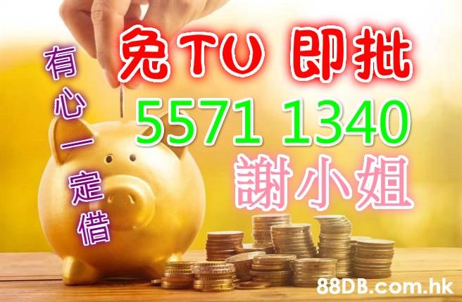 TU Pt 5571 1340 謝小姐 .hk 有心『定償  Saving,Piggy bank,Money,