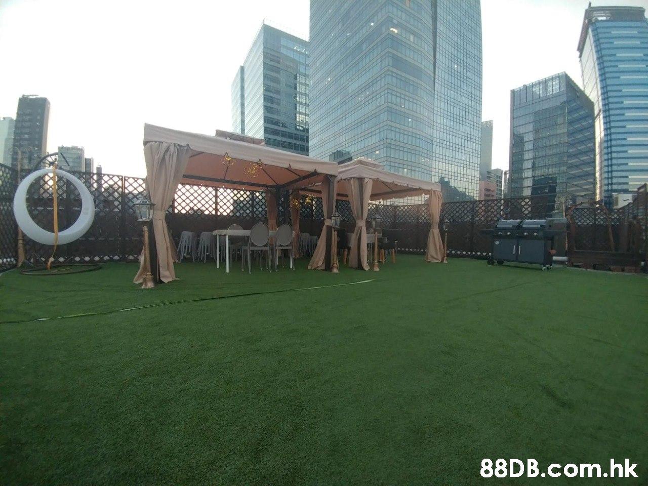 .hk  Grass,Green,Human settlement,City,Lawn