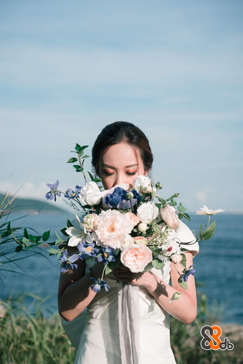 Photograph,Bouquet,Flower Arranging,Flower,Bride