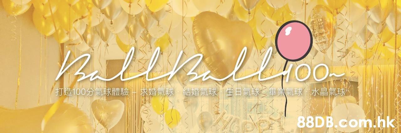ntelhillHO 打造100分氣球體馬驗求婚氣球 結婚氣球生日氣球之畢業氣球水晶氣球。 .hk  Yellow,Text,Font,Petal,