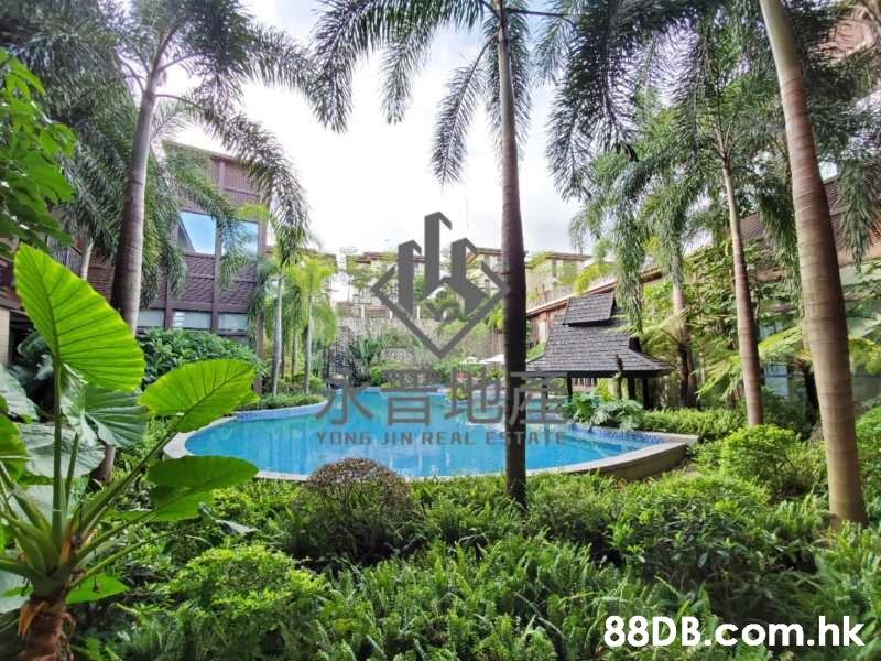 YONG DIN REAL ESTA .hk  Swimming pool,Vegetation,Property,Building,Resort