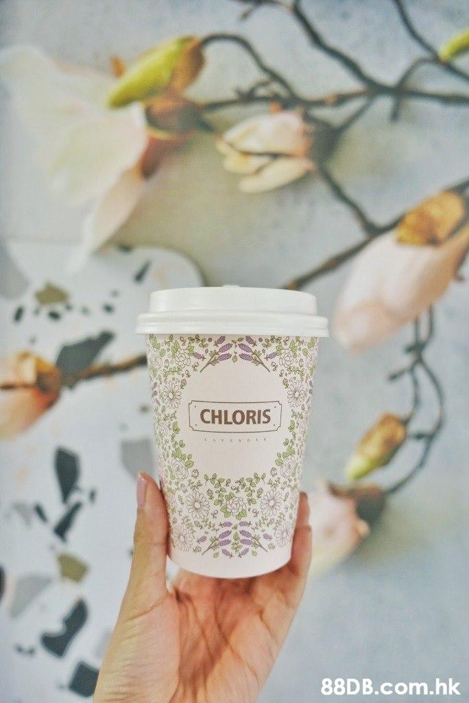 CHLORIS .hk  Teacup,Hand,Cup,Textile,Flowerpot