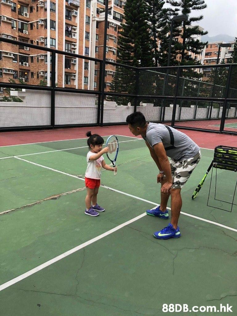 .hk  Sports,Sport venue,Tennis court,Racquet sport,Ball game