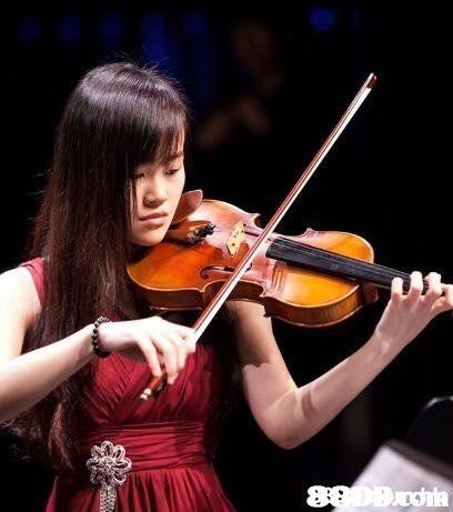 89DDh  Violist,Violinist,Violin,Musical instrument,String instrument