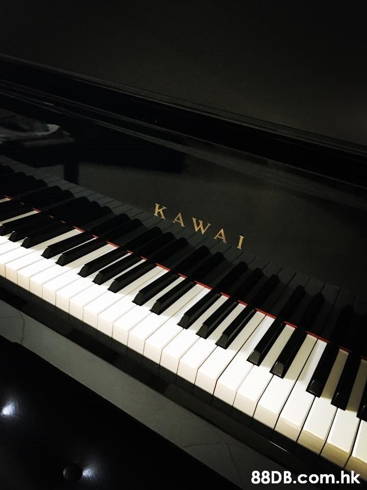 KAWAI .hk  Musical instrument,Piano,Electronic instrument,Keyboard,Musical keyboard