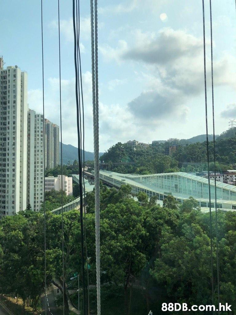 .hk  Metropolitan area,Bridge,Architecture,Sky,Suspension bridge