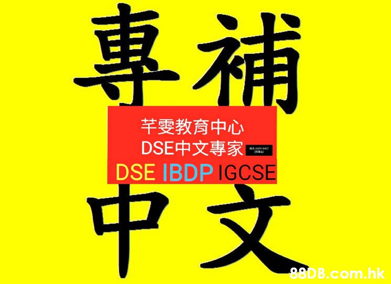 專補 芊雯教育中心 DSE中文專家 DSE IBDP IGCSE 報名:6609 8407 (西環店) 中文 88D B.com.hk  Font,Text,Calligraphy,Line,