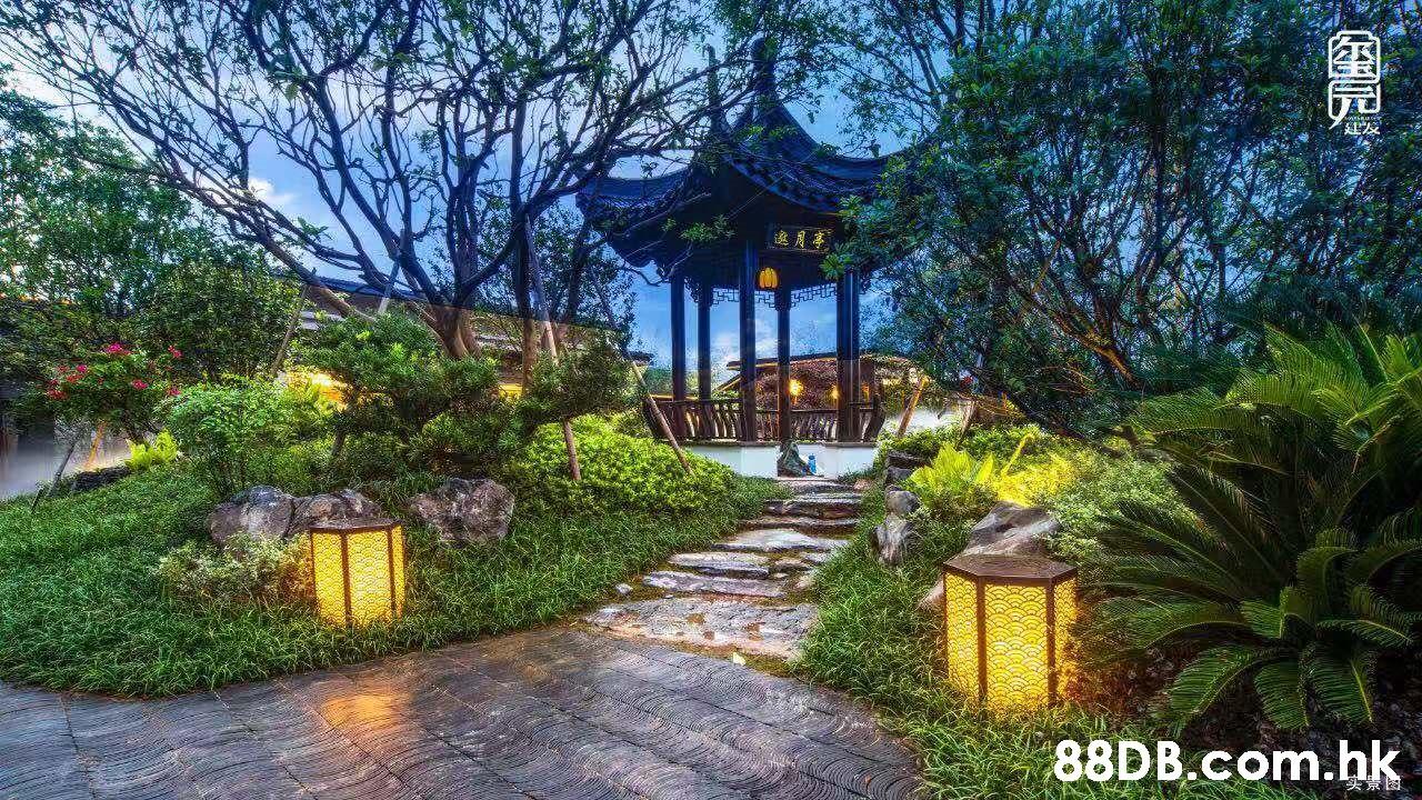 .hk S,Property,Natural landscape,Real estate,Garden,Botany
