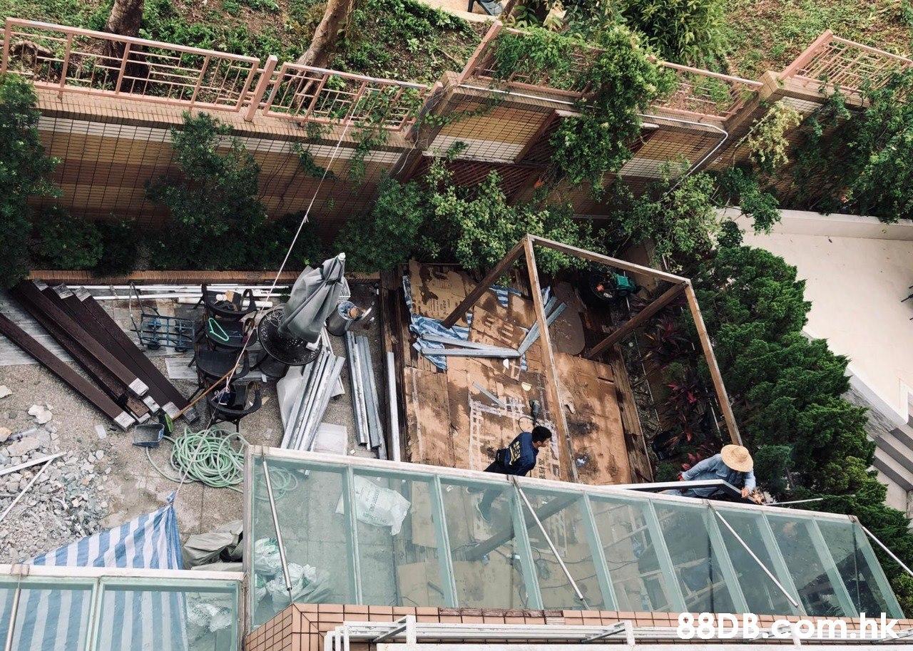 .hke  Geological phenomenon,Tree,Architecture,
