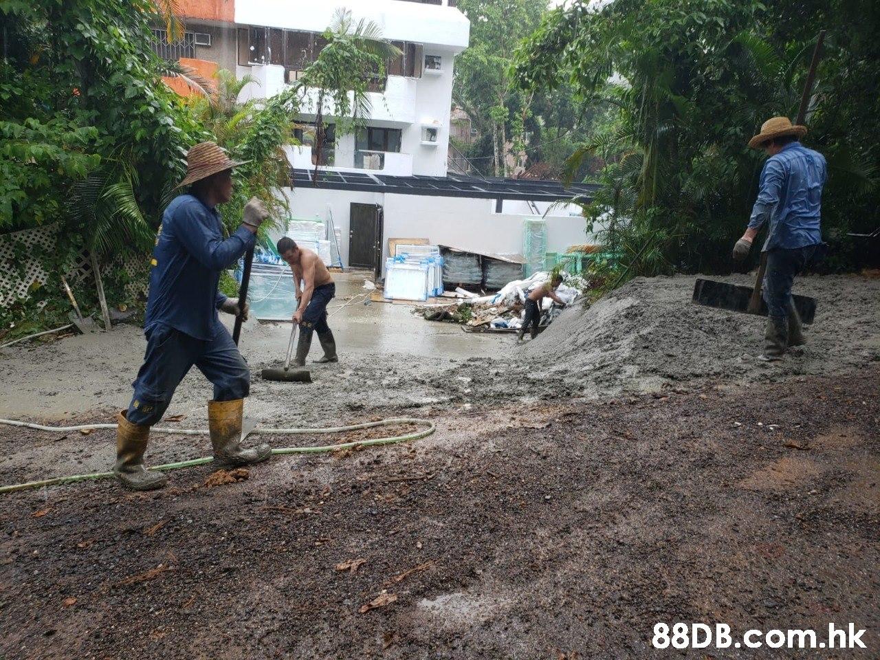 .hk  Asphalt,Water,Soil,Community,Grass