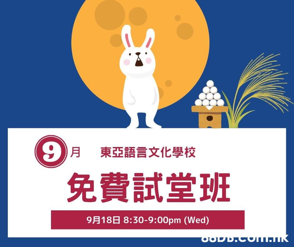 9)月 東亞語言文化學校 免費試堂班 9月18日 8:30-9:00pm (Wed) OODD.Com.K  Rabbit,Rabbits and Hares,Font