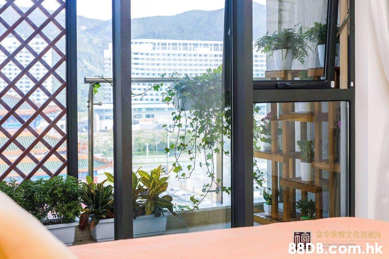同华業檀文化创意园 88D B.com.hk AH RED SANDALWOOD  Property,Room,Building,Real estate,Window