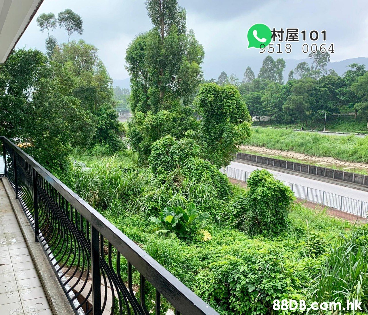 し村屋101 9518 0064 88DBcom.k  Vegetation,Green,Hill station,Tree,Grass