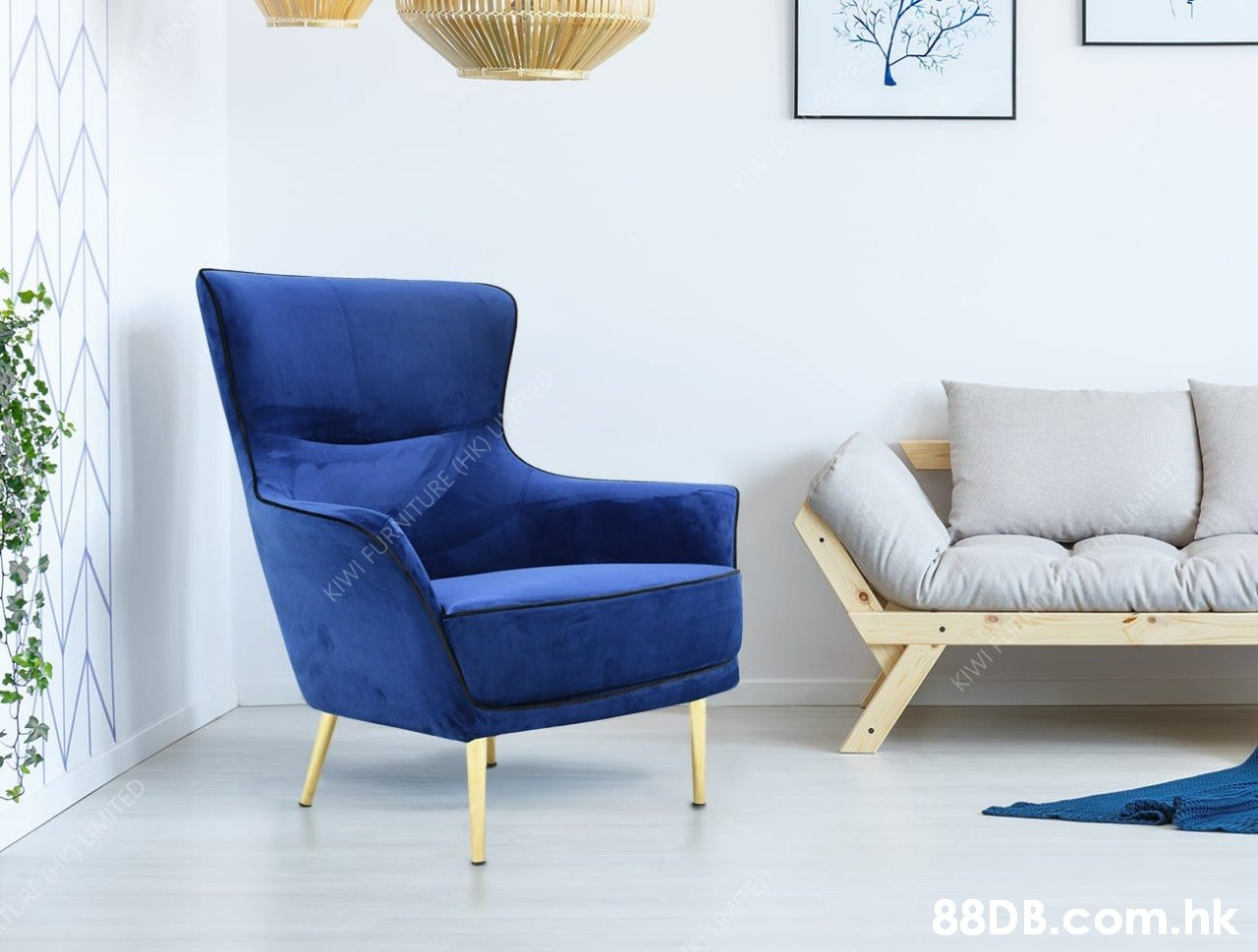 KIWI FURNITURE (HK) UTEE DRE CKO LIMITED TED KIW MTED .hk  Furniture,Blue,Chair,Living room,Room