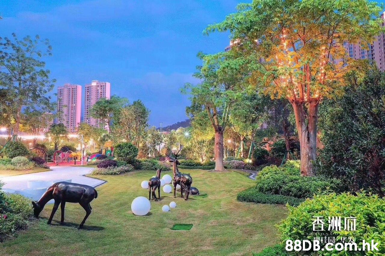 香洲麻 .hk  Natural landscape,Property,Biome,Real estate,Tree