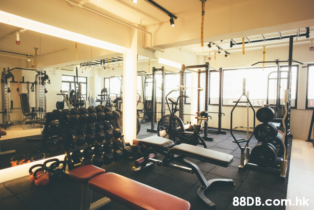 .hk  Gym,Physical fitness,Sport venue,Room,Exercise