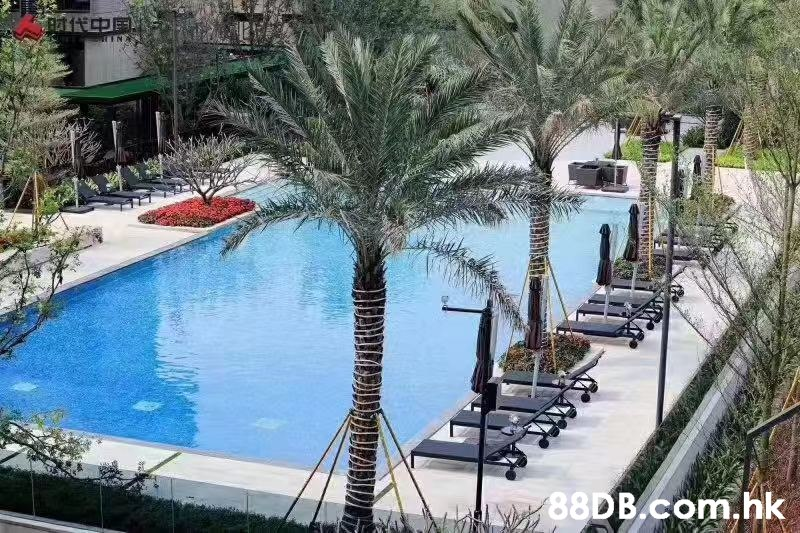 th .hk  Swimming pool,Property,Resort,Real estate,Leisure