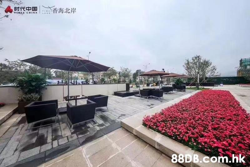 时代中国 香海北岸 TMES CHINA .hk  Property,Building,Real estate,