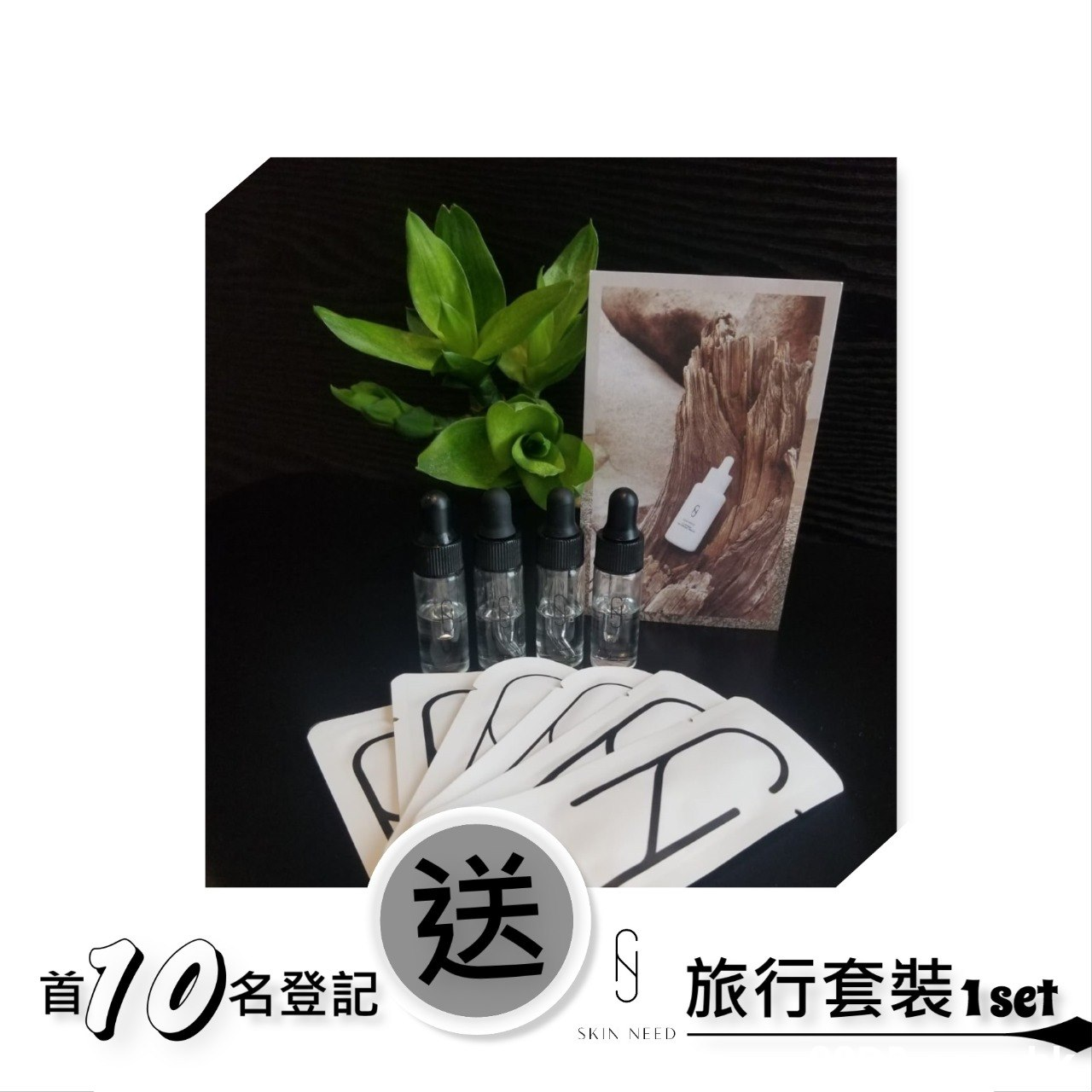 送 10 S 旅行套裝1set 首/の名登記 SKIN NEED  Product,Leaf,Flowerpot,Font,Tree
