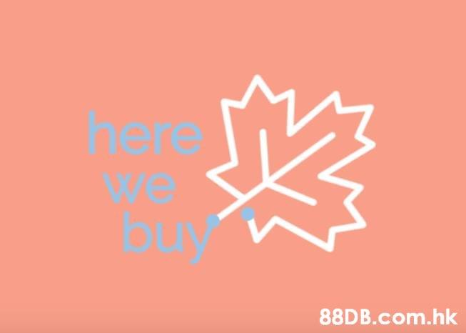 here we buy .hk  Text,Font,Pink,Logo,Orange