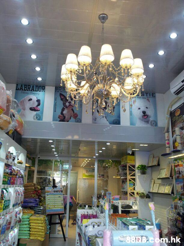 LABRADOR ক TERRI STIE our 88BB.com.hk  Lighting,Building,Ceiling,Light fixture,Chandelier