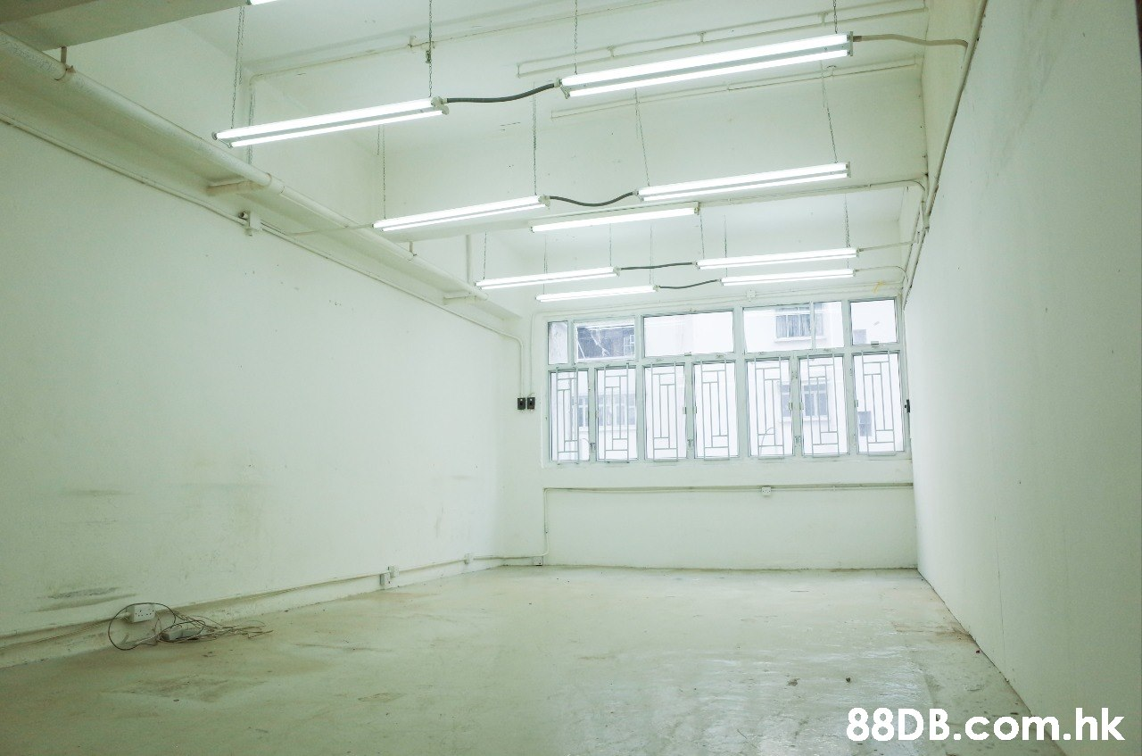 .hk  Property,Ceiling,Room,Daylighting,Building