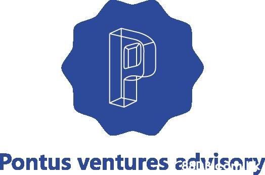 P Pontus ventures advisory  Logo,Font,Graphics,Electric blue,