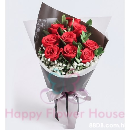 Happy Fover House .h Наррy  Flower,Rose,Bouquet,Garden roses,Red