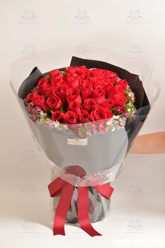 88DB  Flower,Bouquet,Red,Cut flowers,Petal