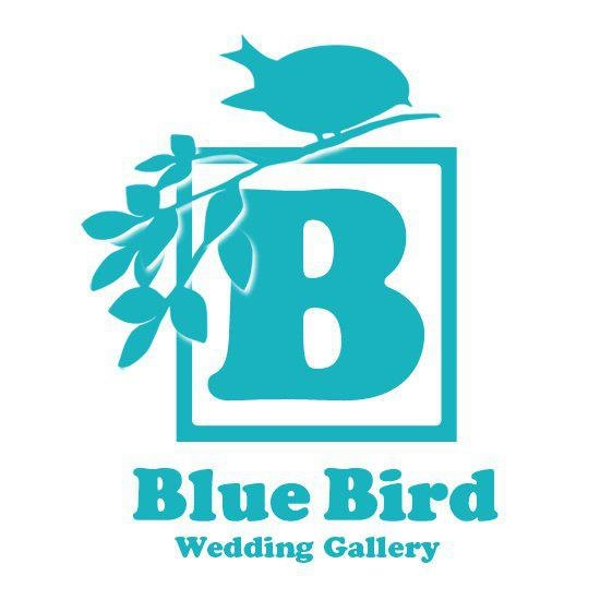 Blue Bird Wedding Gallery  Logo,Turquoise,Font,Graphics
