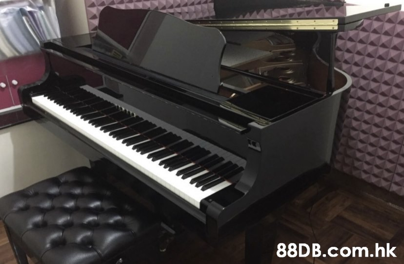 .hk  Musical instrument,Piano,Electronic instrument,Keyboard,Musical keyboard